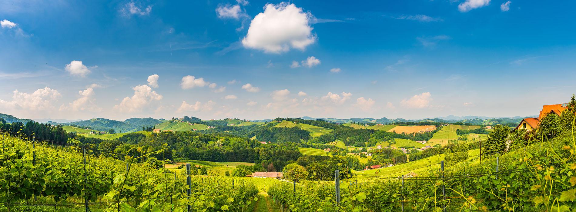 Land Steiermark – IT-Support für die Landesverwaltung